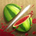 Fruit Ninja (AppStore Link)