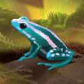 Pocket Frogs - Free pet farming (AppStore Link)