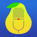 Pear Note (AppStore Link)