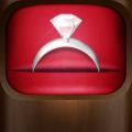 Wedding Planner for iPad (AppStore Link)
