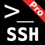 Immagine per SSH Term Pro