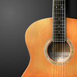 Immagine per guitarism - pocket acoustic & electric guitar