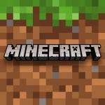 Immagine per Minecraft