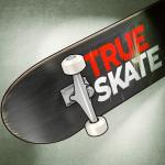 Immagine per True Skate
