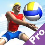 Immagine per Beach Volley Pro