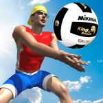 Immagine per Beach Volley Pro Lite