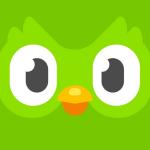 Icona applicazione Duolingo