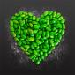 Immagine per Green Kitchen – healthy vegetarian recipes