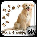 Vita a 4 Zampe: l'applicazione per sapere tutto sui nostri animali domestici