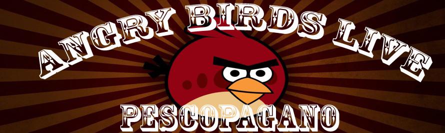 AngryBirdsLive-iSpazio