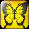 Lost Butterflies, abbina le farfalle e supera i 100 livelli di logica attraverso quattro fantastici mondi | QuickApp