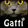 Vinci 6 copie di Gatti su iSpazio!