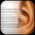 Leggi con le orecchie: da oggi il nostro iPhone potrà leggere un testo e farci il dettato!   QuickApp