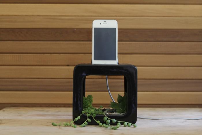 Bloombox, un innovativo amplificatore naturale per i nostri iPhone [Video]