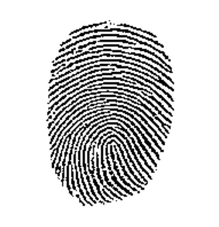 Dopo l'acquisto di AuthenTec, sbloccheremo l'iPhone con la nostra impronta digitale?