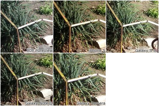 crop-detail2-jpg