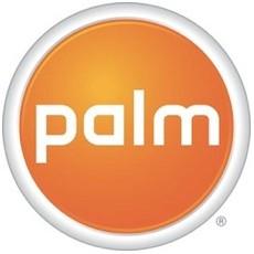palmlogo12313