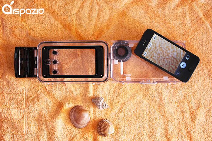 custodia seashell iphone 5