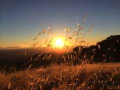 Foto_da_iPhone_5S_iSpazio_3 3