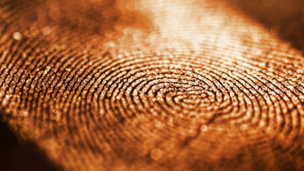 fingerprint_by_andrewpoison-d3b1s1h-620x350