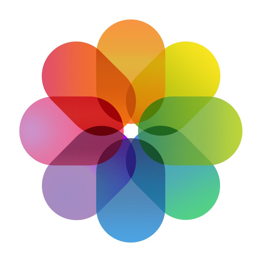 immagini icona