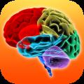 Brain Aktivity HD: tieni il cervello sempre in allenamento | QuickApp