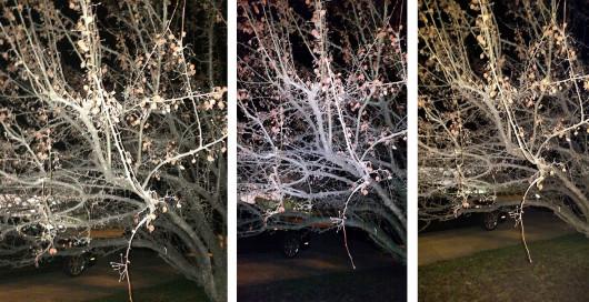 5s_m8_s5_photo_comparison_21