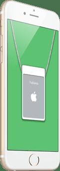 apple-badge-flat-green