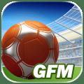 GOAL 2014 – Football Manager, crea e gestisci la migliore squadra di calcio esistente | Quick App