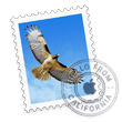 overview_apps_mail_icon
