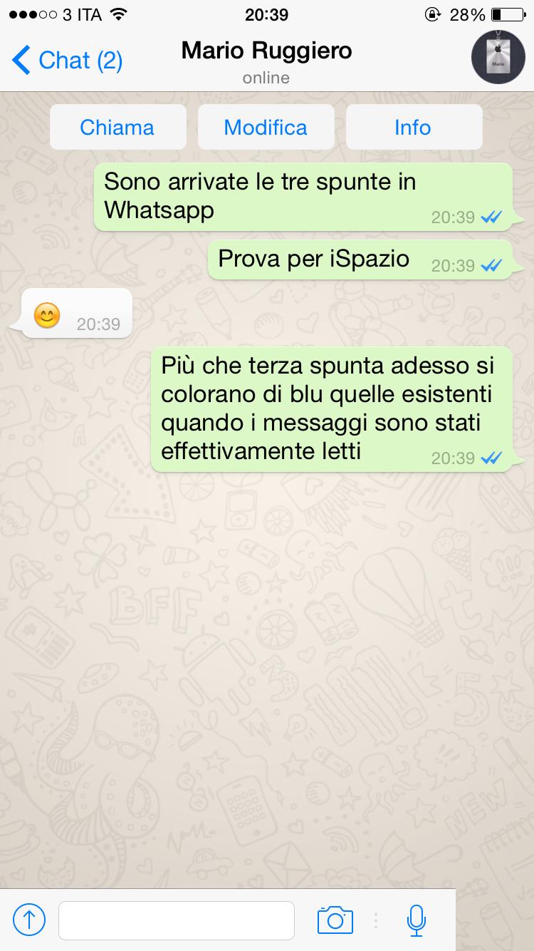 Whatsapp si aggiorna con i segni di spunta blu che - Come sapere se un messaggio e stato letto ...