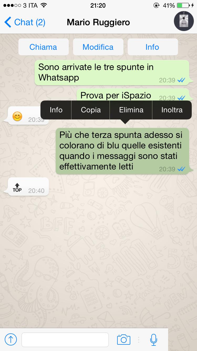 Whatsapp si aggiorna con i segni di spunta blu che - Instagram messaggio letto ...