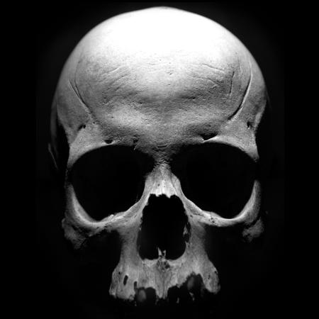 Sons Of Anarchy: The Prospect è ora disponibile in App Store [Video]