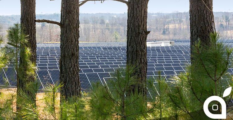 apple campo pannelli solari
