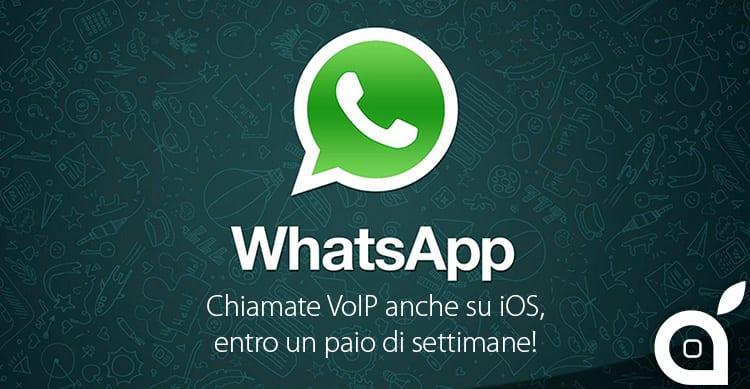 WhatsApp: chiamate VoIP finalmente anche su iOS, entro un paio di settimane!