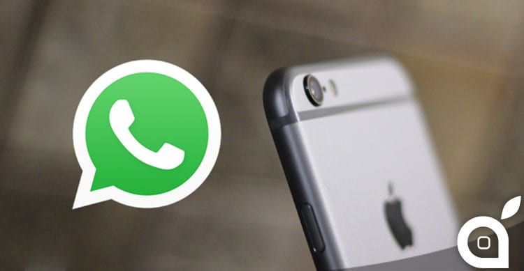 WHATSAPP FALLIMENTO NELLA PRIVACY
