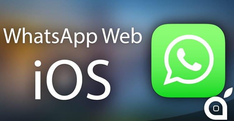 whatsappwebios