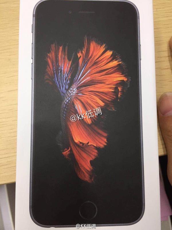 iphone-6s-retail-packaging-leak-1