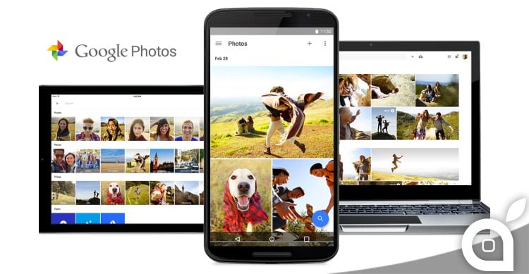 google photos fly labs