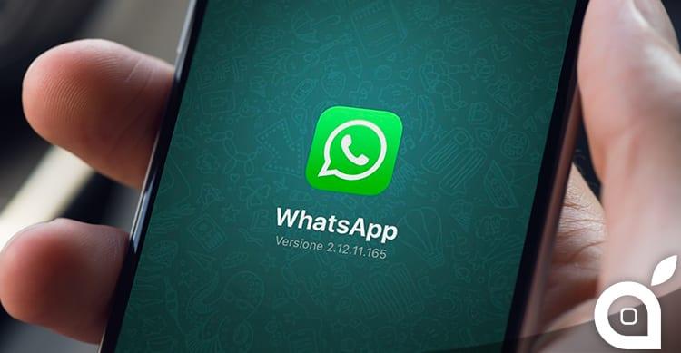 WhatsApp si aggiorna e risolve i bug della versione precedente!