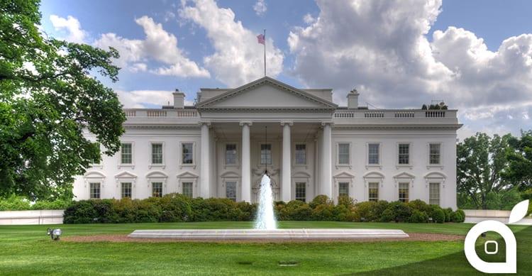 Americani stanchi di chi li governa, uno su tre vedrebbe Apple alla guida del paese