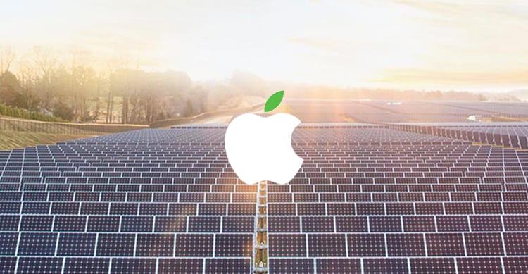 Con la sua zona boschiva sostenibile Apple può occuparsi di tutti i packaging dei suoi prodotti