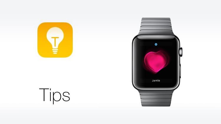 Apple aggiunge i consigli per l'utilizzo dell'Apple Watch nell'applicazione Suggerimenti