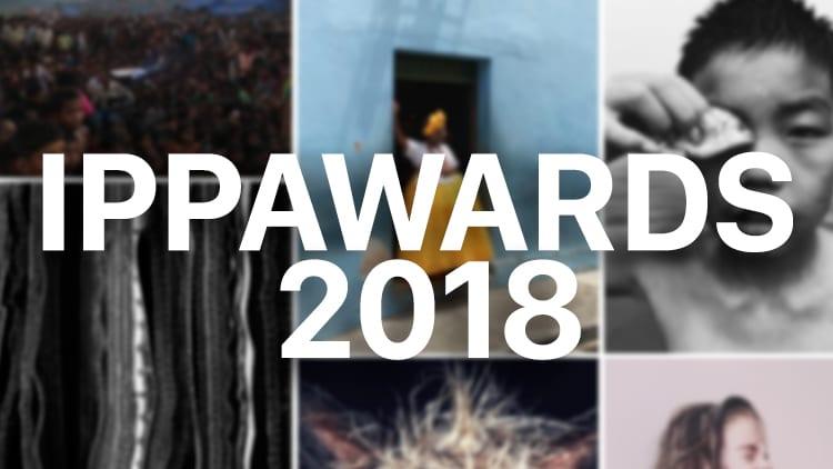 Assegnati gli iPhone Photography Awards, Tim Cook si congratula con i vincitori